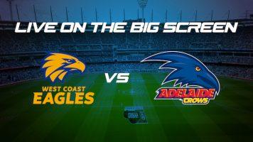 Eagles VS Crows